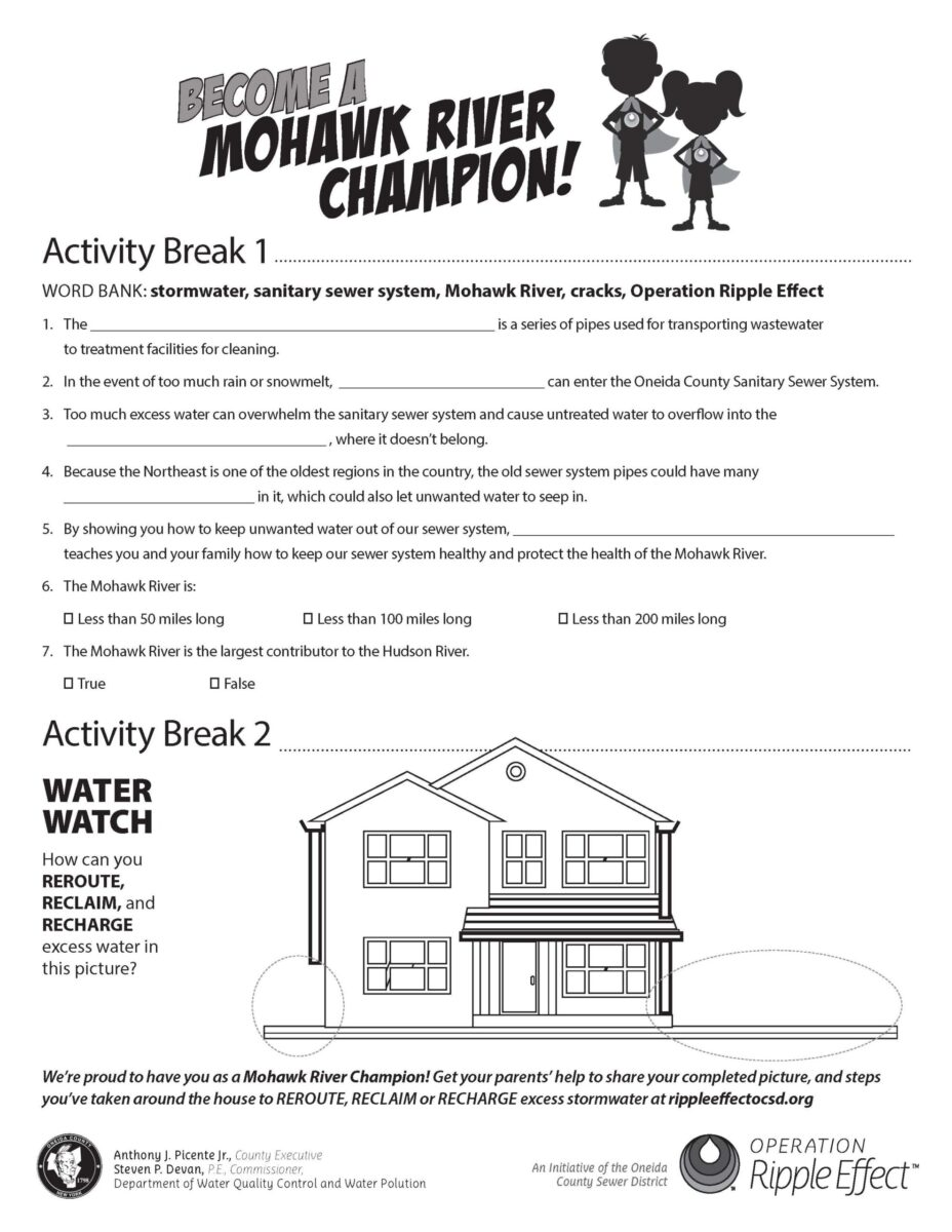 Mohawk River Champion Activity Break